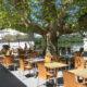 FETE DES MERES – Dimanche 26 mai midi – menu à 37€